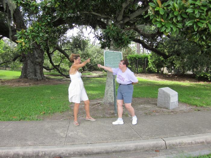 1) Dueling Oak, City Park, New Orleans