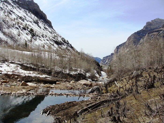 3. Explore and appreciate the beauty of Lamoille Canyon.