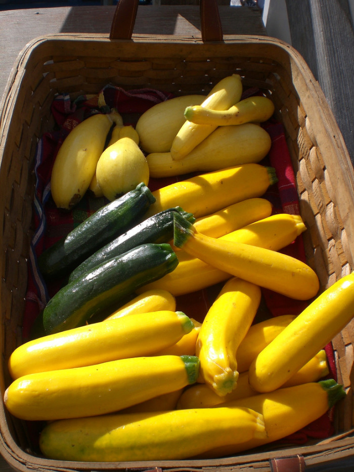 8. Coming up with creative ways to use up all that zucchini from your garden.