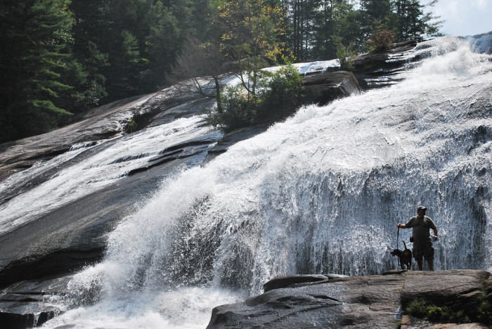 6. DuPont State Forest