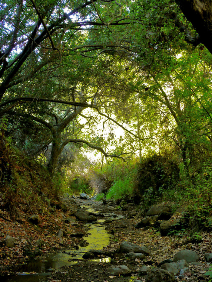 13. Will Rogers State Park
