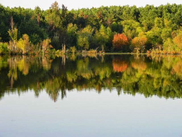 5. Oktibbeha County Lake, near Starkville
