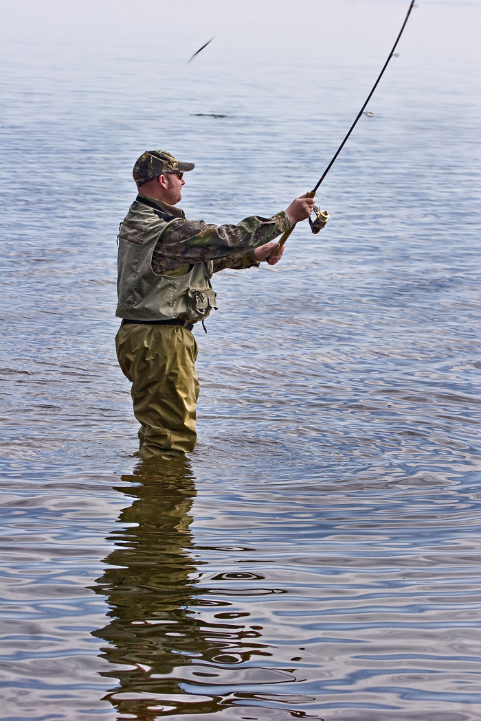 4. And catch some fish while you're at it.