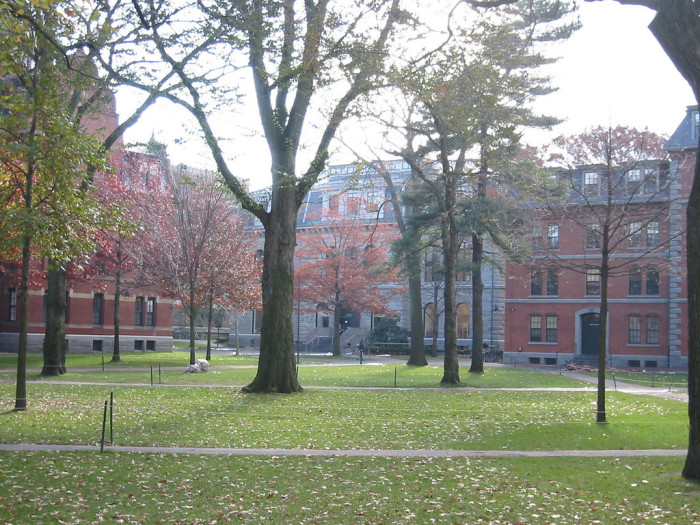 """10. They jokingly ask if they should """"pahk the cah in Hahvahd yahd."""" Harvard Yard is literally grass. You will get towed."""