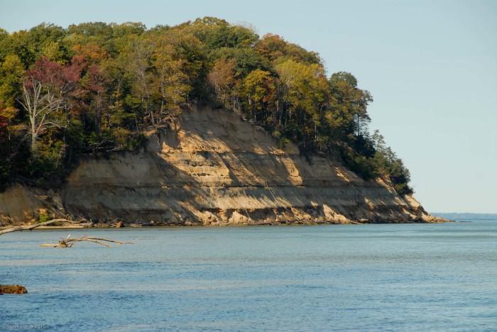 3. Calvert Cliffs, Lusby