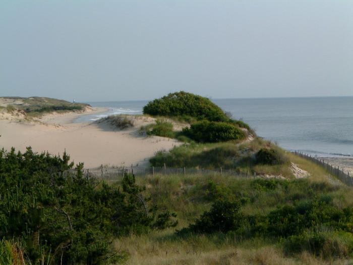 1. Dunes and beaches that border the Atlantic Ocean