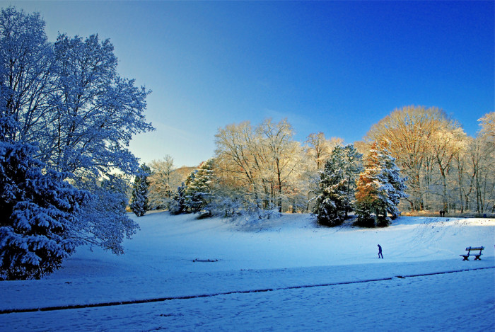 "2. ""Nutmeggers love winter."""