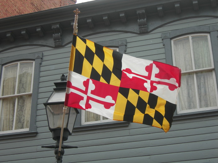 10. You feel bad for other states, because you know their flag pales in comparison to this one.