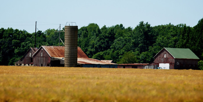 8. Old farm buildings still stand tall along Kitts Hummock Road just south of the Dover Air Force Base.