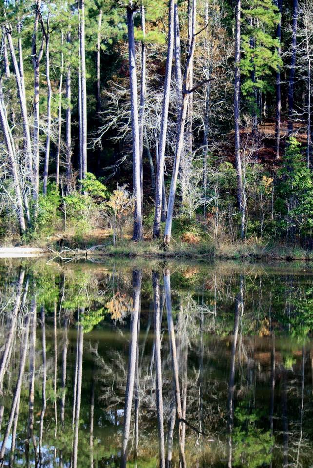 6. Clear Springs Lake, near Meadville