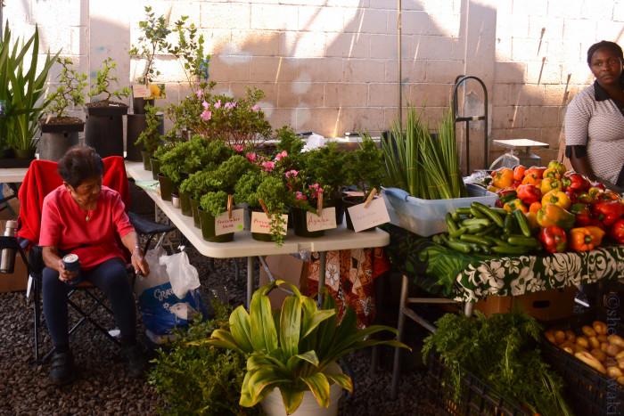 6. Hit up a local farmer's market.