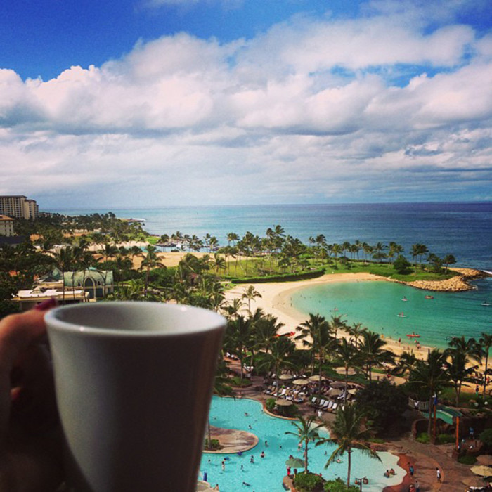 6. You have experienced the magnificence that is a cup of Hawaii-grown coffee – and prefer it to anything you can find at Starbucks.
