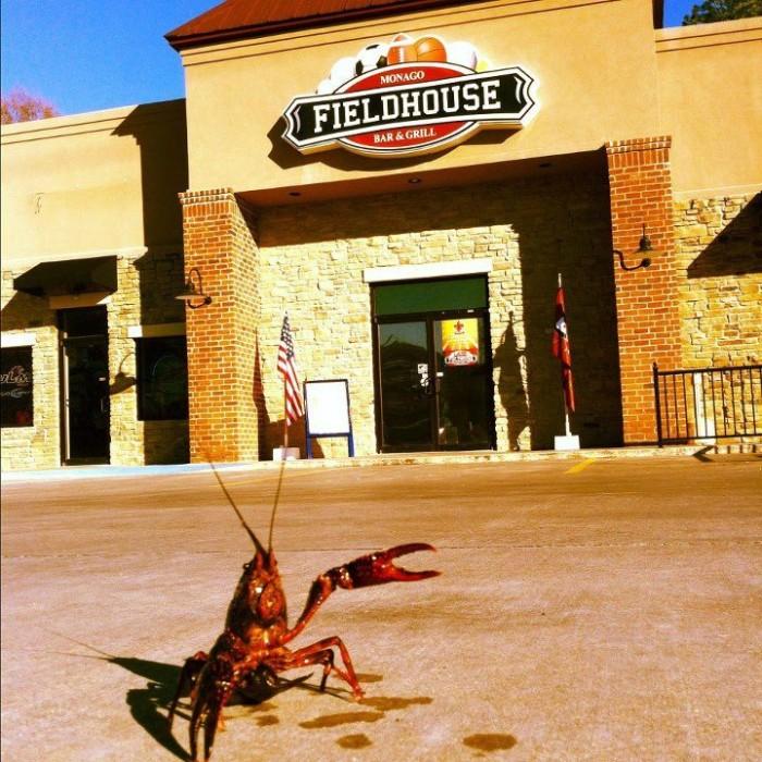 6. Fieldhouse Bar & Grill, Monroe, LA