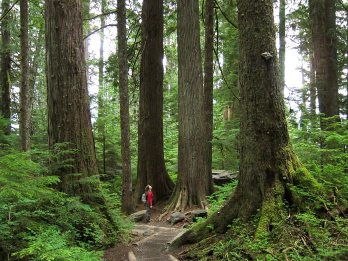 1. Take the trail to Lake Twenty-Two.