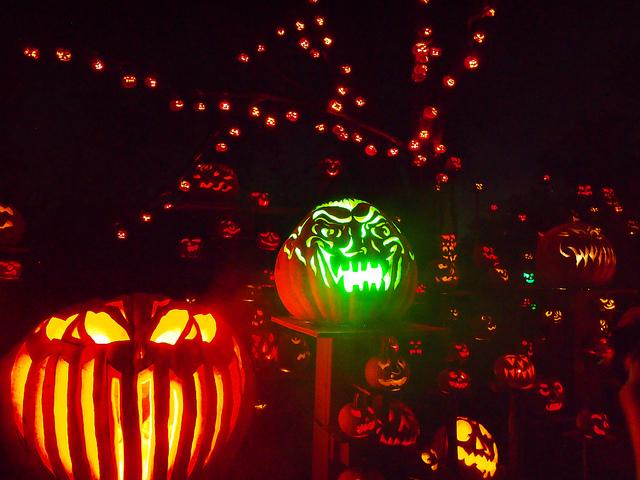 2. Jack-O-Lantern Spectacular at Roger Williams Park, providence