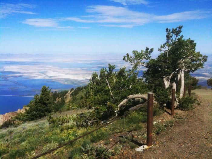 Hike Willard Peak, the tallest mountain in Weber County.