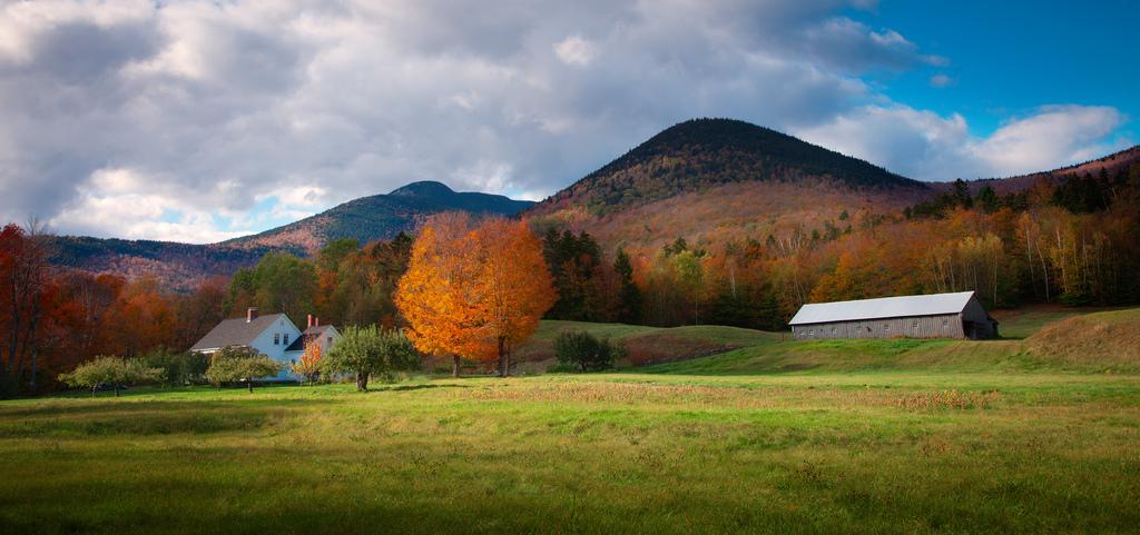 Lesben b b in New Hampshire