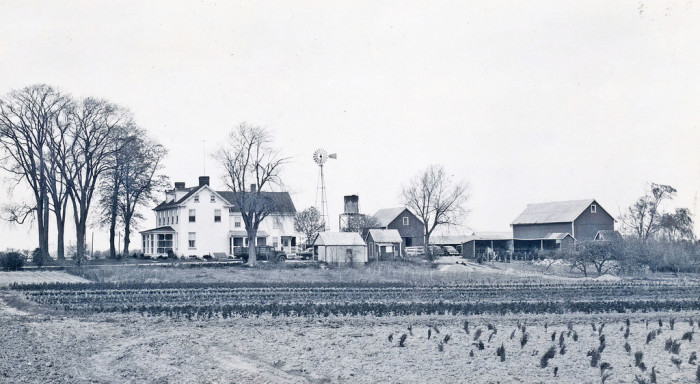 3. A quintessential family farm, in southern New Castle County along Route 301, circa 1953.