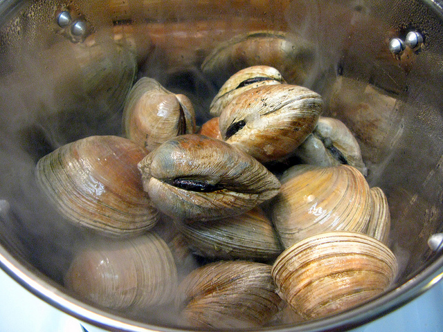 10. Quahogs (and other varieties of clams)