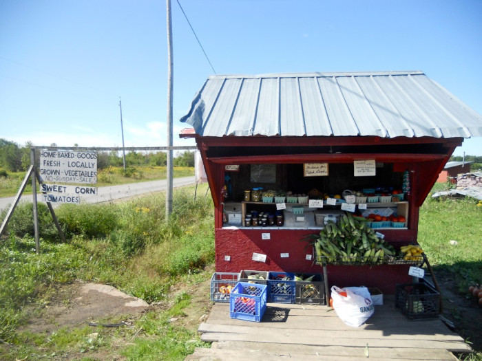 7. When you head to eastern Mass and can't find a good farmstand anywhere.