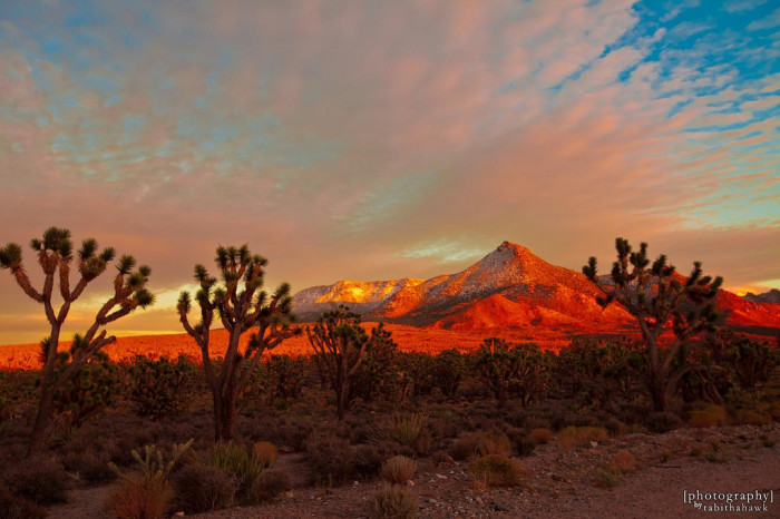 16. Bask in a glorious Arizona sunset and know that you're living in one of the most stunning places in the world.