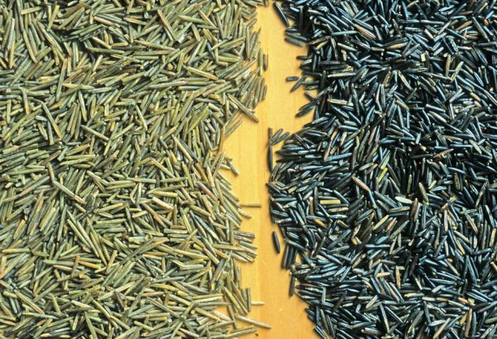 9. Wild Rice