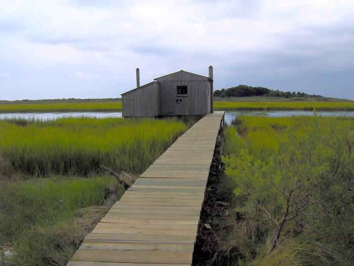 6. Smith Island