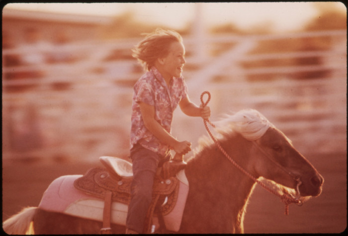 10. This kiddo is enjoying a ride at a junior rodeo in Parker.