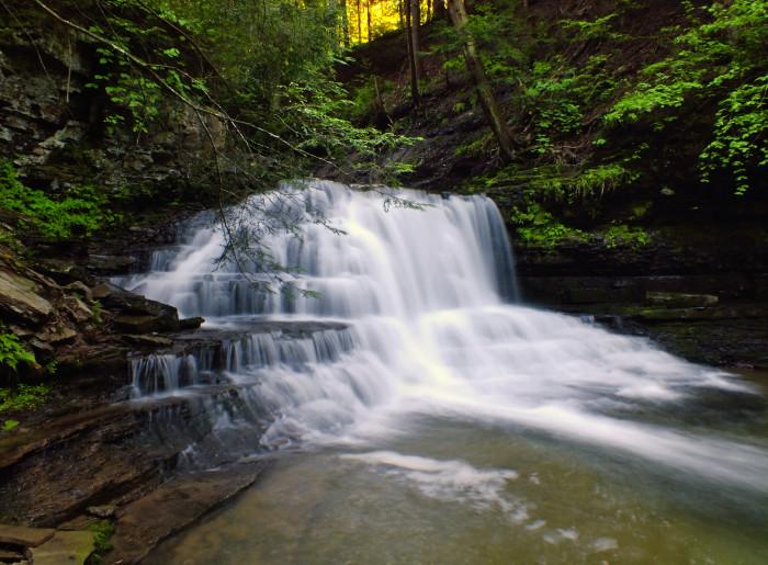 4) Salt Springs State Park - Montrose, Pennsylvania