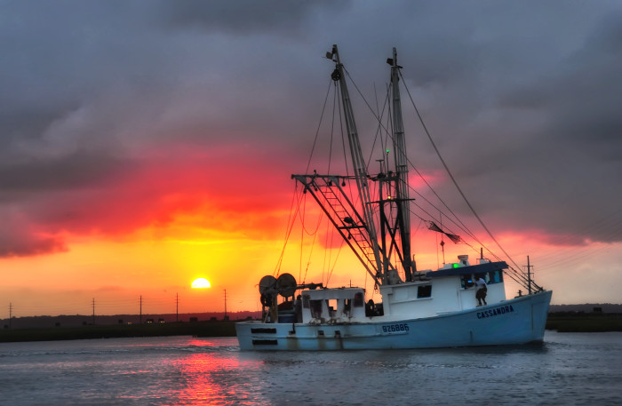 1. A shrimp boat returning home in Chincoteague Island