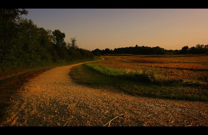 7.  Early morning walk.