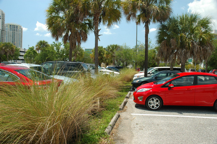 9. You'll circle the parking lot a ridiculous number of times for a shady spot.