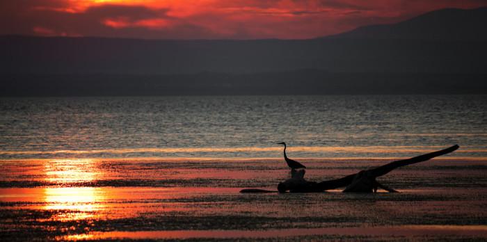 7.  Romantic sunset