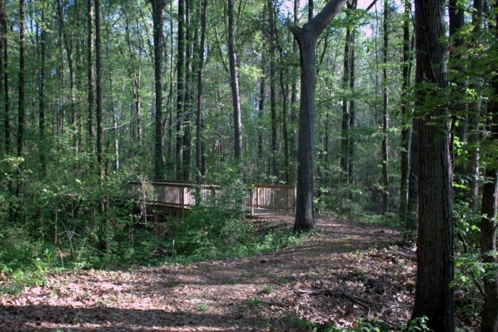 8. The DeSoto County Greenway Trails (locations throughout Desoto County)