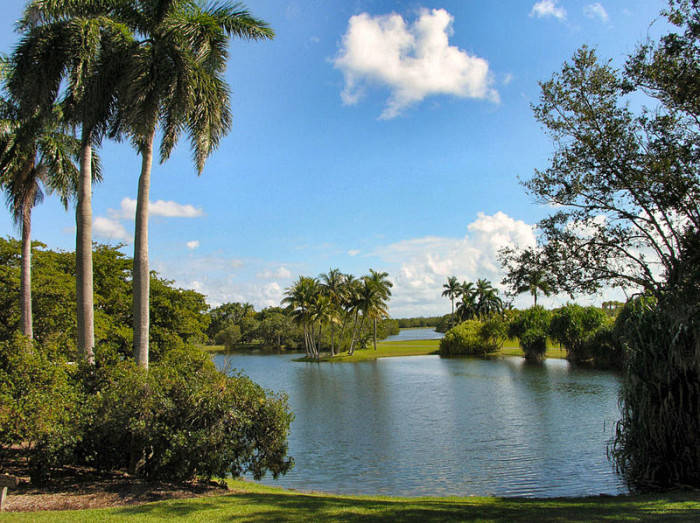 10. Don't let the heat keep you from having fun. Try to visit as many of our fascinating tropical gardens as you can.