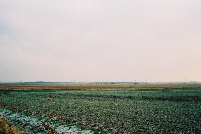 10.Flat land with no trees freaks you out.