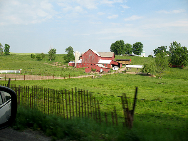 6. Take a Sunday drive through Ohio Amish Country