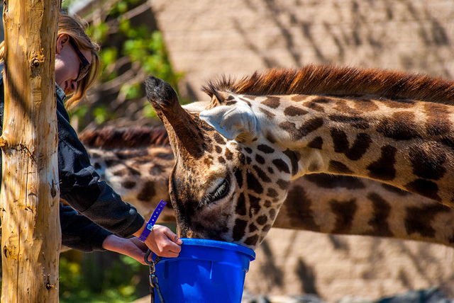 1. Roger Williams Park Zoo, Providence