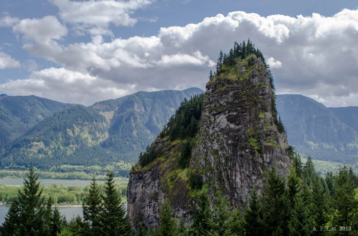 7. Visit Beacon Rock State Park (and hike to see Rodney Falls).