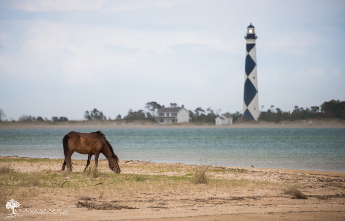 5. But the Outer Banks is also a place of magic, mystery and lighthouses.