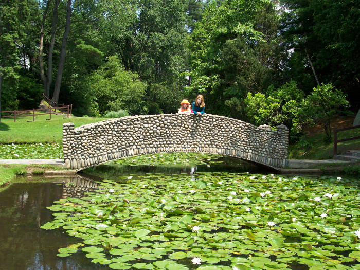 2. Stanley Park Bridge in Westfield. With the lilypads blooming and tufts of dandelion and flower petals floating through the air, this place is ideal for some beautiful springtime shots.