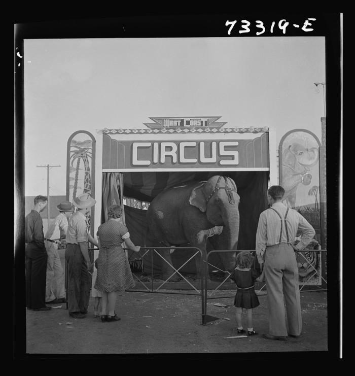 19. A circus in Klamath Falls, 1942.