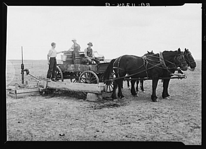 "5. ""Farmer's children hauling water for stock near South Heart, North Dakota"""