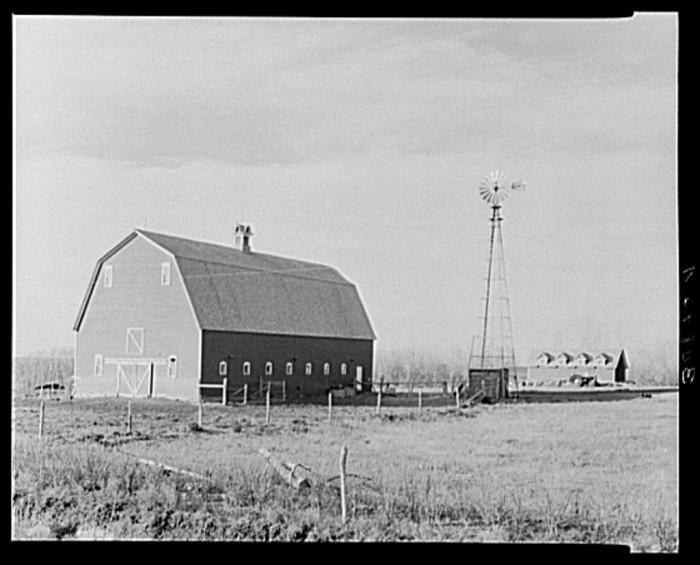 "1. ""Barn and windmill on farm. Divide County, North Dakota"""