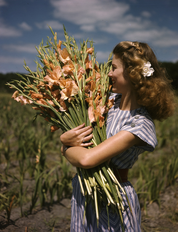 1. Unidentified woman holding gladiolus at Terra Ceia Island Farms
