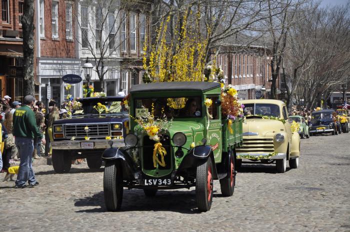 8. Attend the Nantucket Daffodil festival.