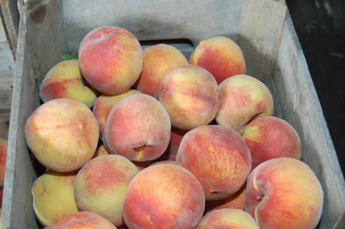 8. Peaches
