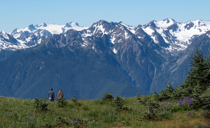 2. The town neighbors the Olympic National Park, which is home to some of our state's most enchanting scenery.