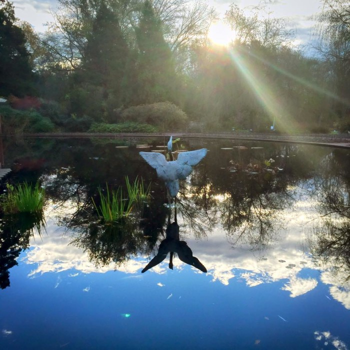 3. Huntsville is home to one of Alabama's most picturesque botanical gardens.