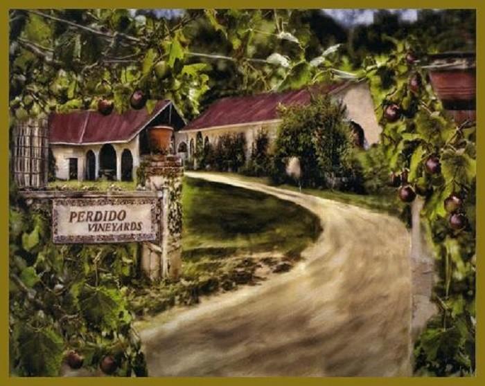 13. Tour one of Alabama's beautiful vineyards.